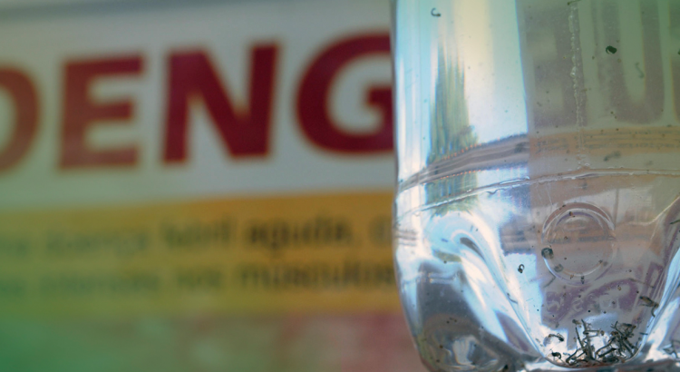 dengue assintomatica modelo_imagem_capa_blog_dengueassintomatica